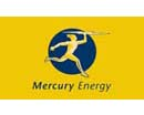 Pulse Client - Mercury Energy
